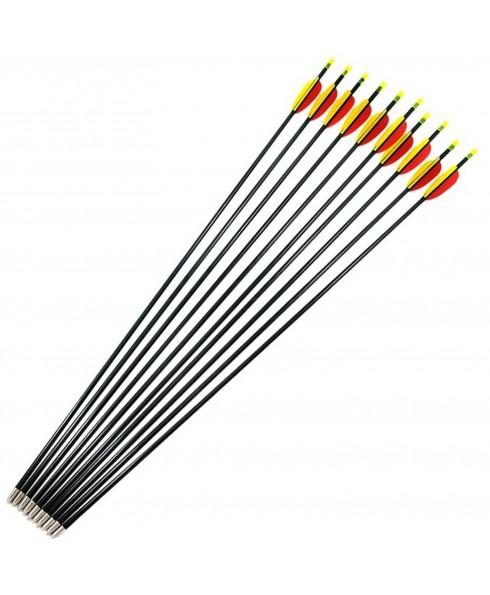 """10 Frecce Freccia tiro con Arco in Fibra Vetro Punta Fissa 28 """" Pollici 69 cm"""