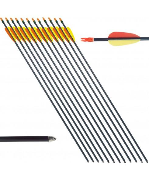"""12 Frecce Freccia Professionali Arco Tiro Bersaglio Alluminio 20 60 Libbre 29"""""""