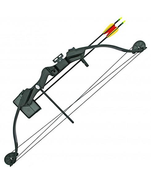 Arco Compound Professionale 23 - 28 Libbre Nero con 2 Frecce Tiro Bersaglio